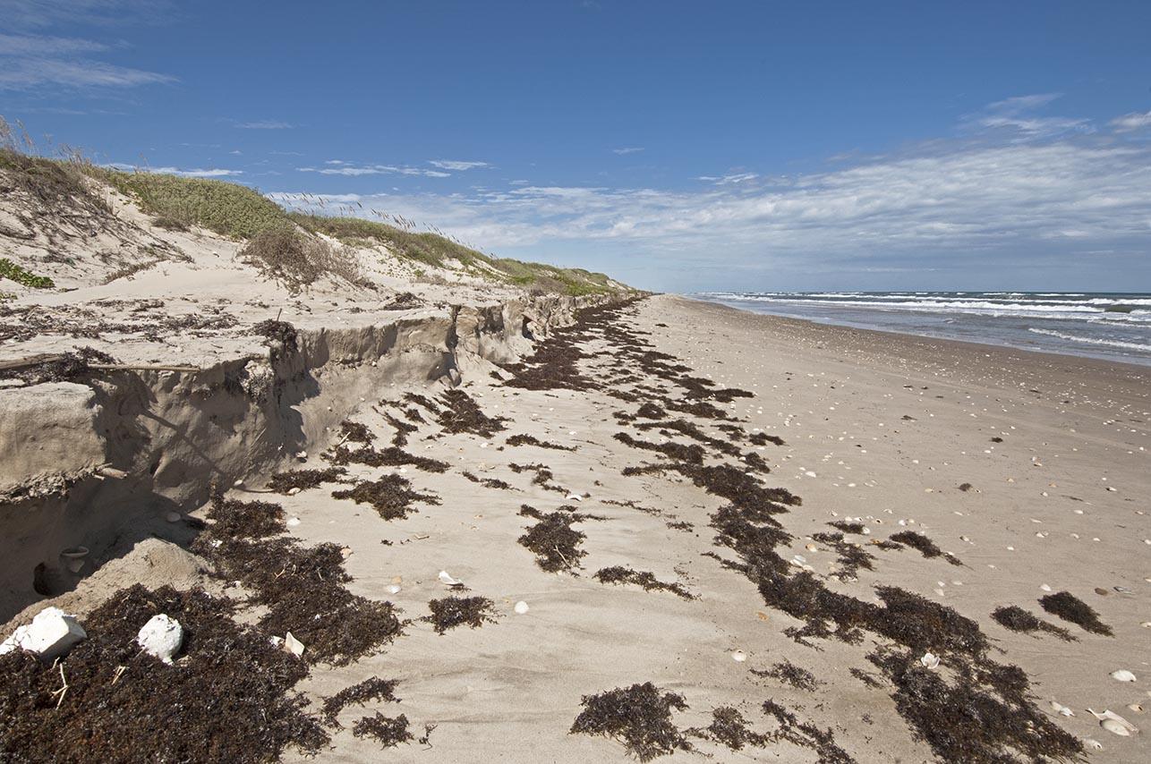 padre-no-beach-mile-56-102013-dsc_0061-72-dpi