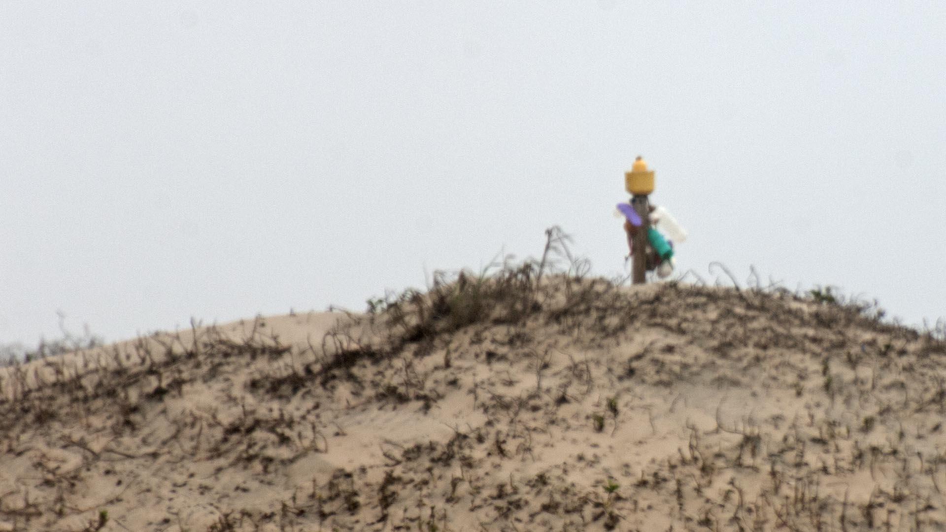 spi-beach-sculpture-in-the-dunes-tele