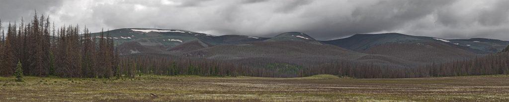 Groundhog Park Panorama 2015