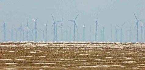 Wind turbines 2 Padre DSC_0196 crop 2 small