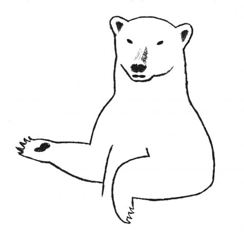 polar bear 1 inverted horizontally