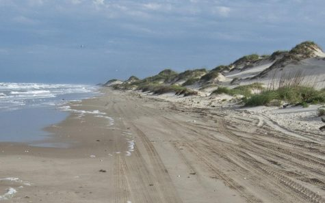 spi-mule-14-mile-marker-included-little-beach-big-dunes-tall-dsc_0167-crop
